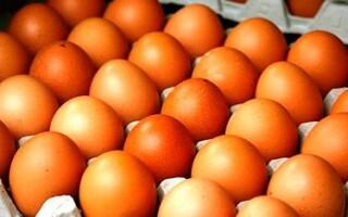 Куриные яйца на завтрак – есть или не есть?