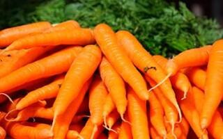 Морковь и её полезные свойства