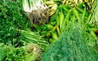 Как надолго сохранить зелень свежей