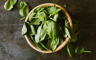 Польза и вред шпината для здоровья